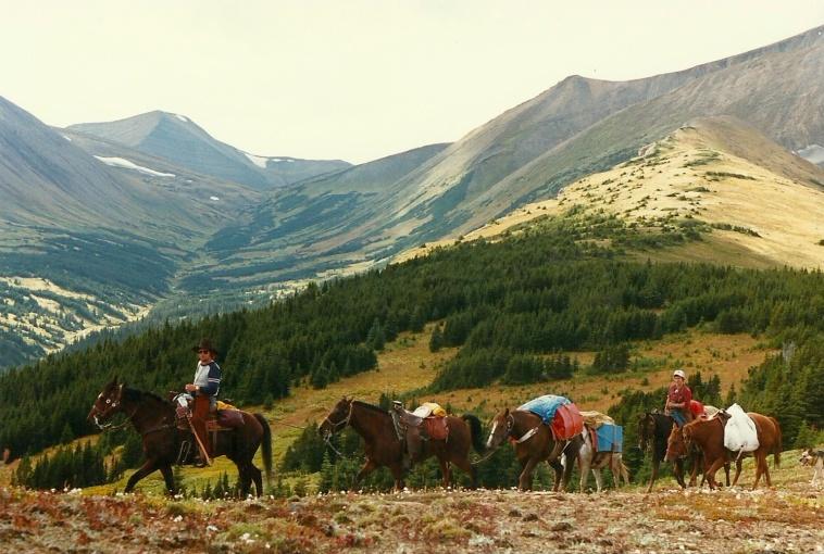 Mountain Back Trip