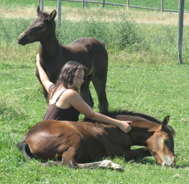 Noble-T Ranchhand and Noble-T Tia Maria 2