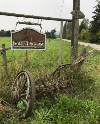 Nobles T Morgans Sign